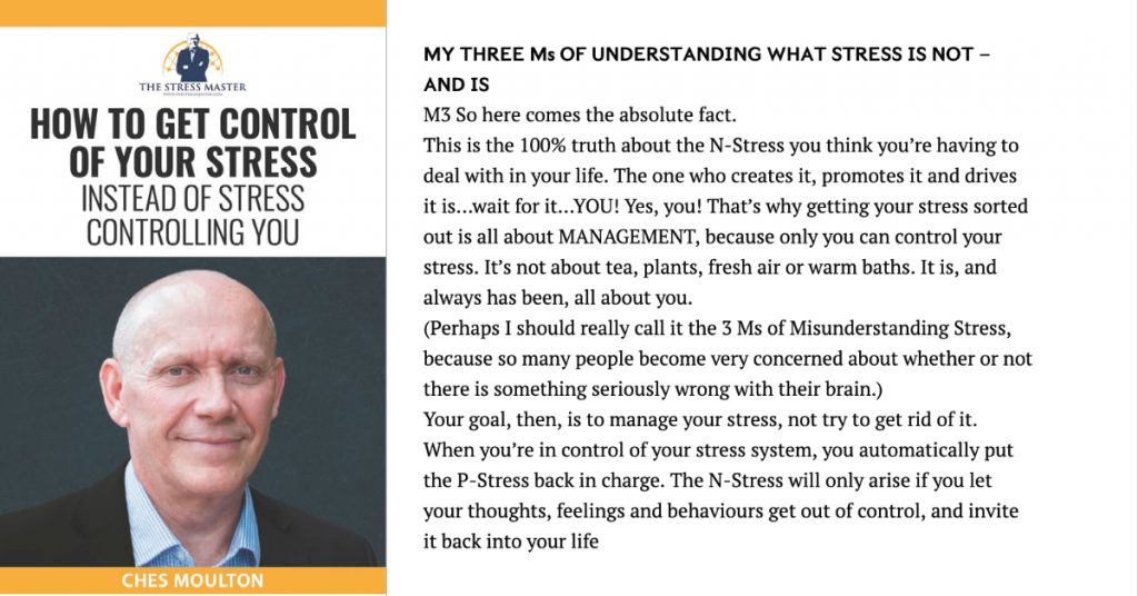 100% Truth About Stress 1